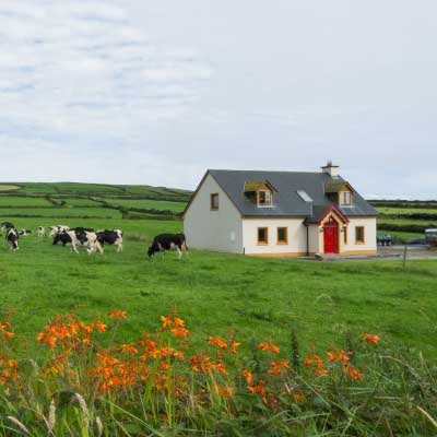 Irish House in the countryside needing a septic tank